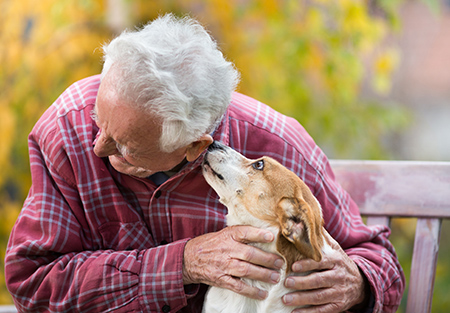 pet therapy for seniors